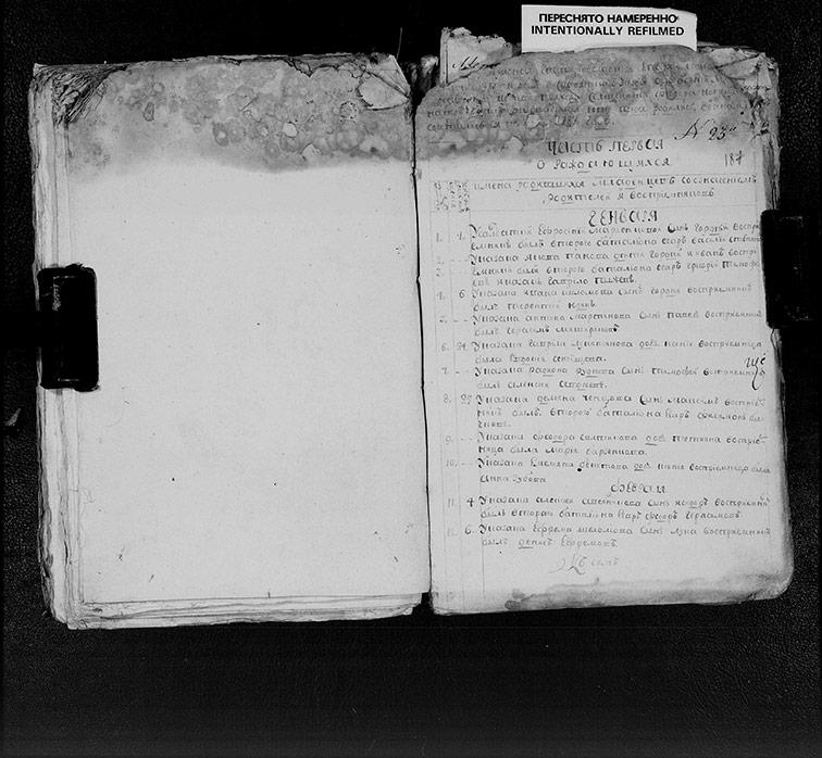 Метрическая книга Христорождественской церкви села Берека за 1787 год