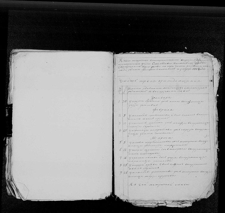 Метрическая книга Николаевской церкви села Ленивка за 1794 год