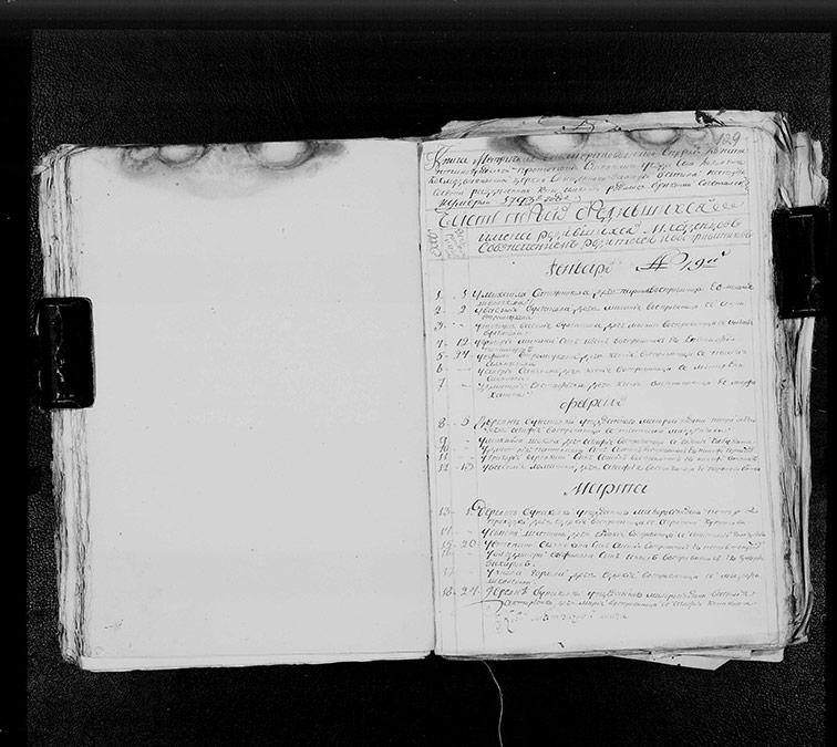 Метрическая книга Космодемьяновской церкви села Лозовенька за 1793 год