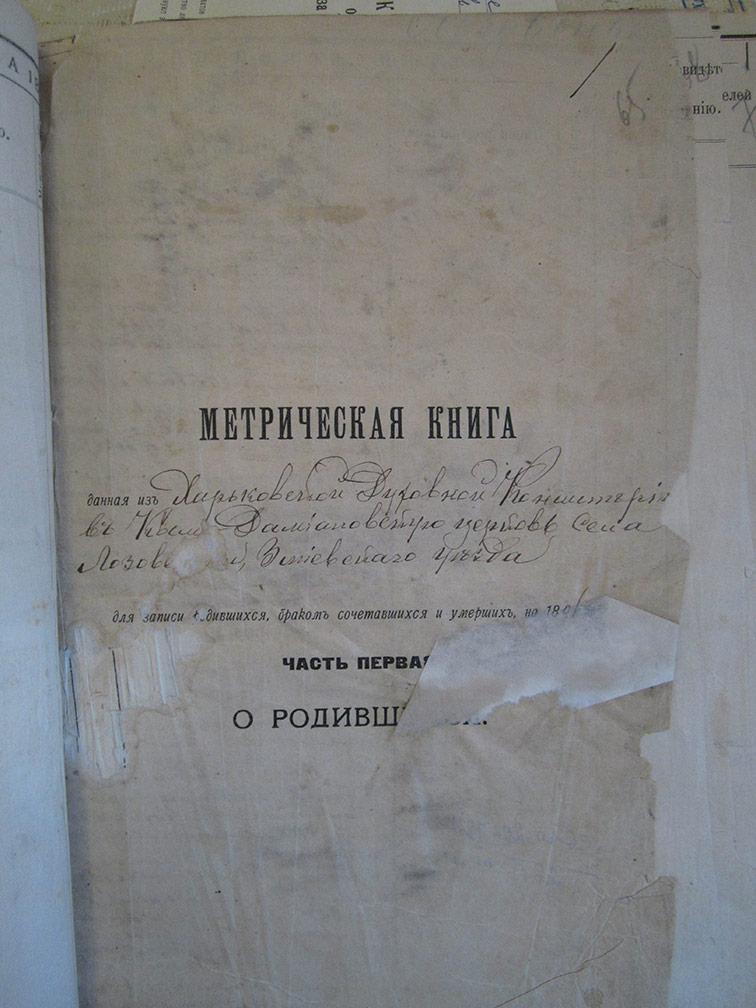 Метрическая книга Космо-Дамиановской церкви села Лозовеньки за 1896 год