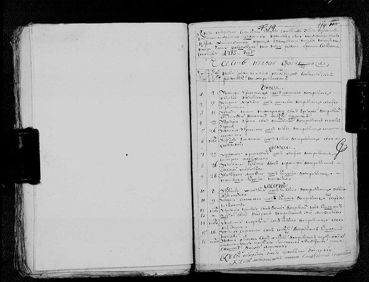 Метрическая книга Троицкой церкви села Михайловка за 1785 год
