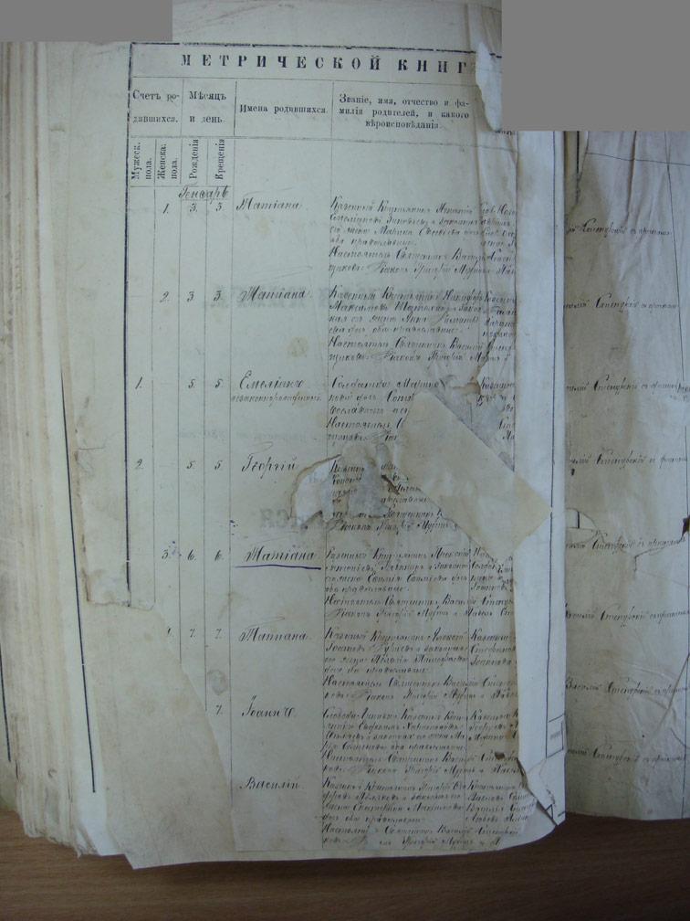 Метрическая книга Троицкой церкви села Охочее за 1880 год