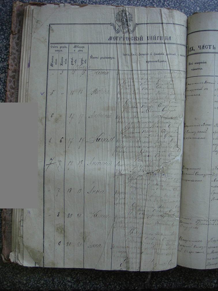 Метрическая книга Троицкой церкви села Охочее за 1903 год