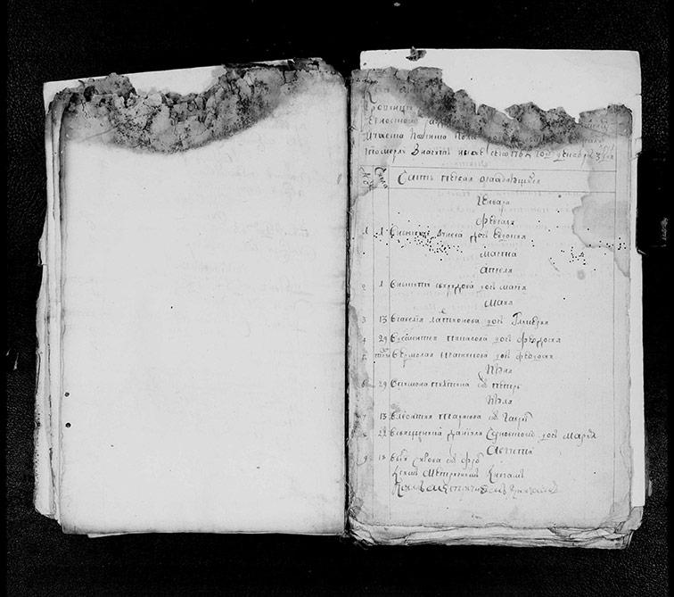 Метрическая книга Екатерининской церкви села Протопоповки за 1765 год
