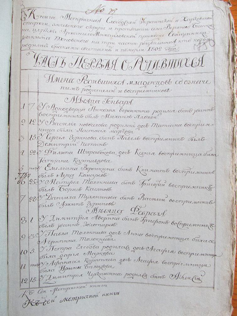 Метрическая книга Архангело-Михайловской церкви села Верхний Бишкин за 1802 год