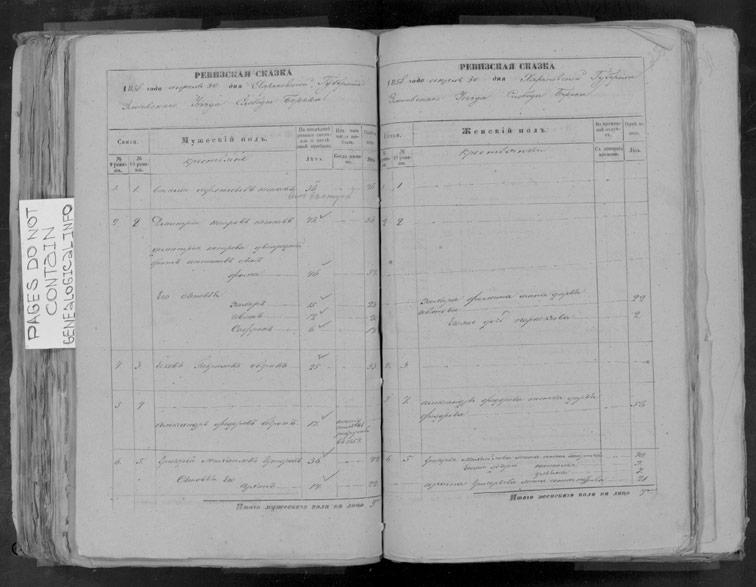 Ревизская сказка Береки 1858 год (10-я ревизия)