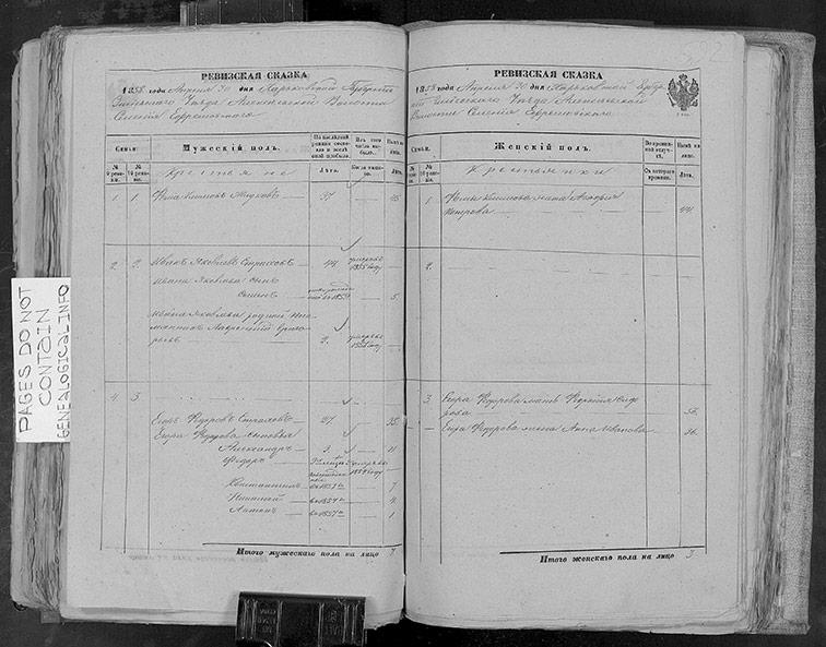 Ревизская сказка Ефремовки 1858 год (10-я ревизия)