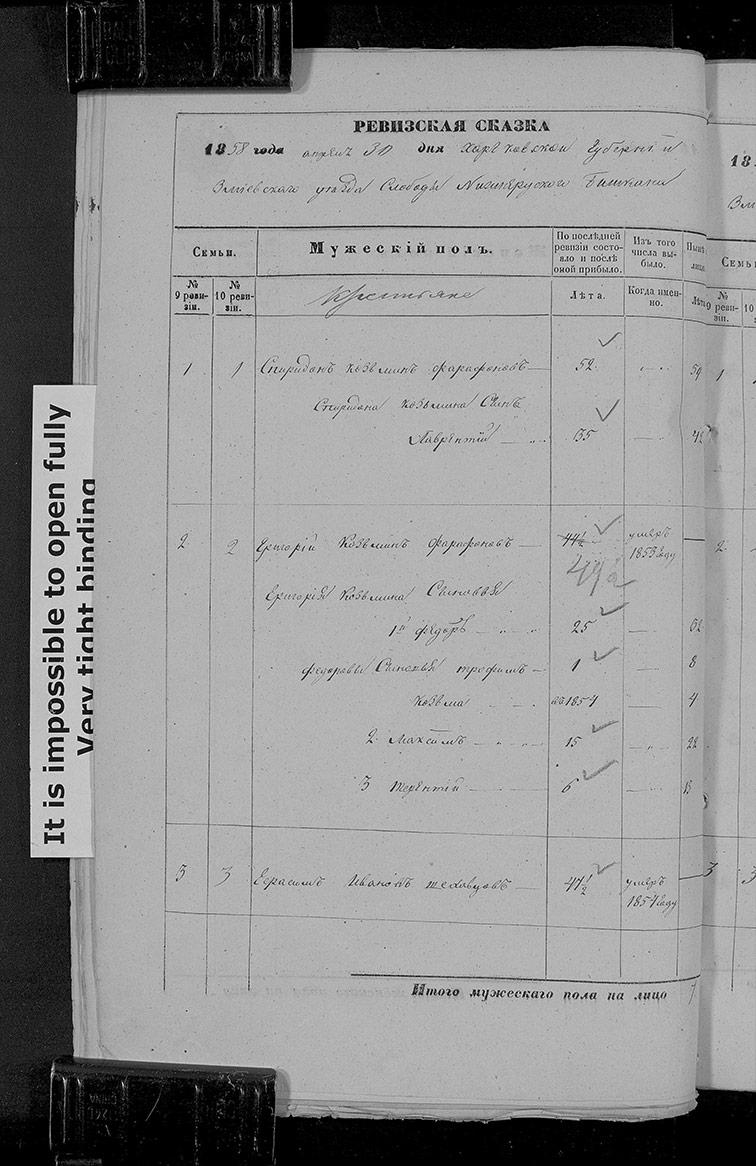 Ревизская сказка Нижнего Бишкина 1858 год (10-я ревизия)